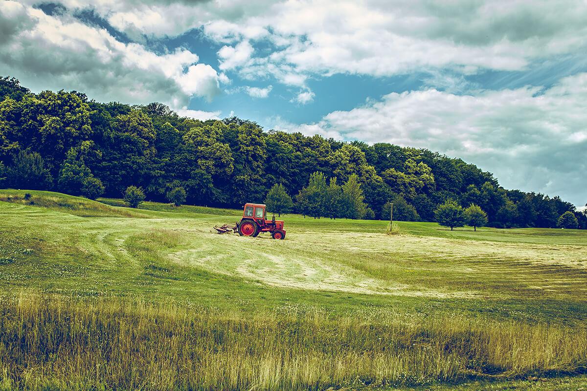 Come aprire un'azienda agricola